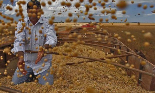 Con el foco en la cosecha, se desacelera el ritmo de comercialización.