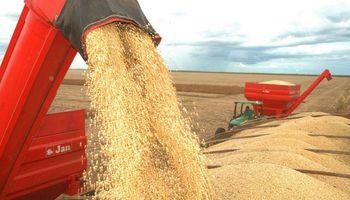 Cosecha de soja presenta un avance del 3% en Brasil