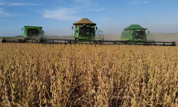 8,7 millones de hectáreas ya fueron cosechados.