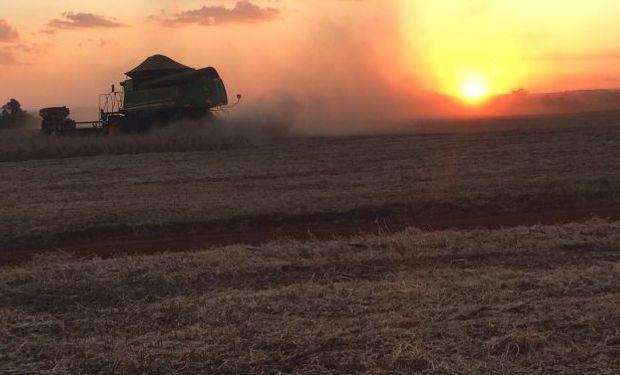 A nivel nacional, la cosecha de soja logró cubrir un 16% de la superficie.