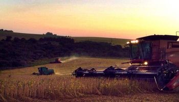 96 millones de toneladas de soja brasilera