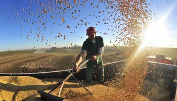 Estiman en 102 millones de toneladas la cosecha de soja en Brasil