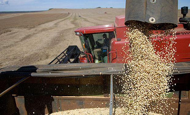 USDA estimó la cosecha de soja en 58,5 millones de toneladas.