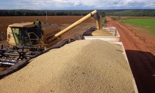 Según datos de Safras & Mercado la cosecha de soja en Brasil presenta un avance del 75% sobre el área apta, contra 80% del año pasado.