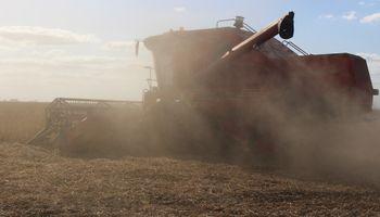 Importante avance en la cosecha de soja gracias al clima