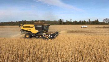 Estados Unidos: no descartan rindes mayores para la soja