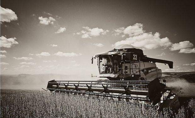 Se espera una producción de 102 millones de toneladas de soja, implicando una caída de 6 millones con respecto a la campaña previa.