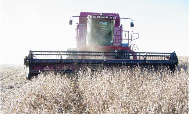 Avanza la cosecha de soja pero advierten sobre pérdidas