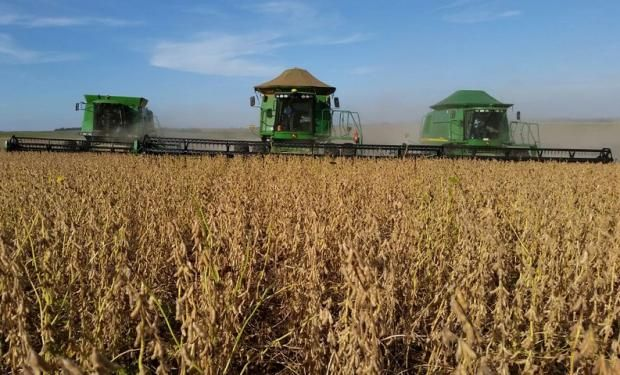 """""""Es tiempo de desactivar la cláusula Monsanto esta campaña. Hoy con la ley actual de semillas la cláusula es ilegal. El Estado tiene que actuar"""", dijo Chiesa, de CRA."""