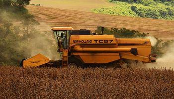 Cosecha de soja: 58 millones de toneladas