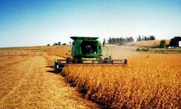 El avance de cosecha presiona a la oleaginosa.