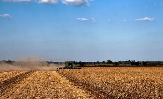 Agricultura y AFIP, realizarán un relevamiento para determinar cuál es realmente el porcentaje que representa la producción en campos alquilados.