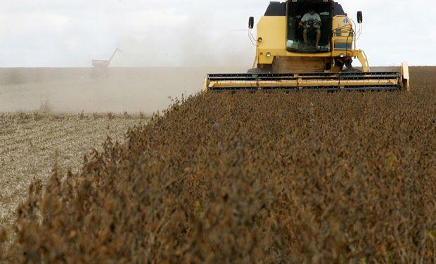 Por el mal clima la venta de soja va más lenta