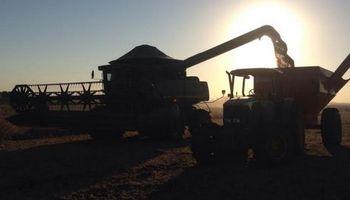 Buen ritmo de cosecha en el centro norte de Santa Fe