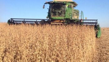 Soja de primera en Santa Fe: avanza la cosecha, suben los rindes