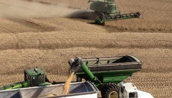 Estados Unidos: USDA dio por iniciada la cosecha de soja