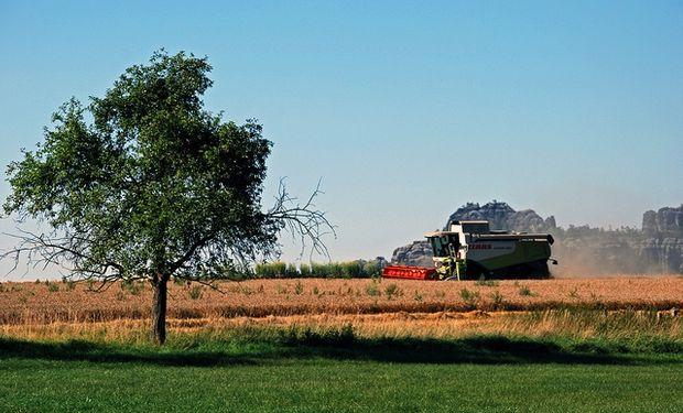 """En trigo se generarán más de 75 u$s/ha adicionales utilizando """"tecnología comercial"""""""