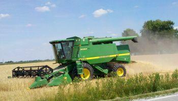 Recortan producción de trigo en EE.UU.