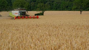 Mejora cosecha en Rusia y Ucrania