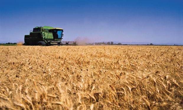 Argentina se encamina a expandir su participación en el mercado internacional en 2016.