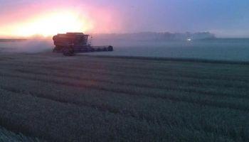 Trigo: finalizó la cosecha en el centro norte de Santa Fe