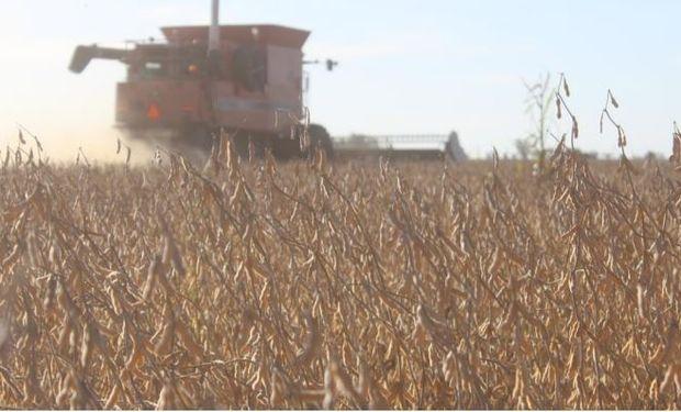 En el norte se cosechó un 70 % de la soja y el rinde cae 5,5 qq/ha contra el año pasado