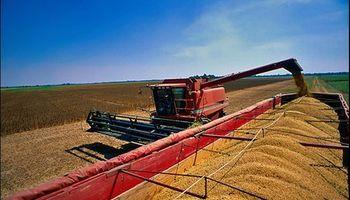Fuerte caída de la cosecha en Córdoba