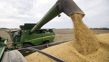 Dato bajista: la cosecha en Estados Unidos avanza más rápido que lo esperado