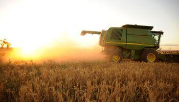 Prevén cosechas abundantes en Estados Unidos