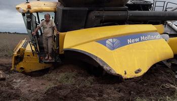 Así intentan cosechar en Santiago del Estero tras el temporal de lluvias