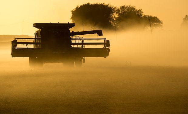 La cosecha en Estados Unidos avanzó con fuerza.