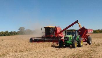 Siembra, pulverización y cosecha: cuál es el costo de trabajar con maquinaria propia