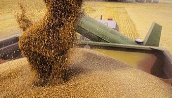 Destacan que la cosecha en Entre Ríos alcanzó un nuevo récord