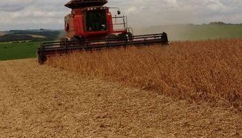 Se confirmó en Brasil el récord de la cosecha