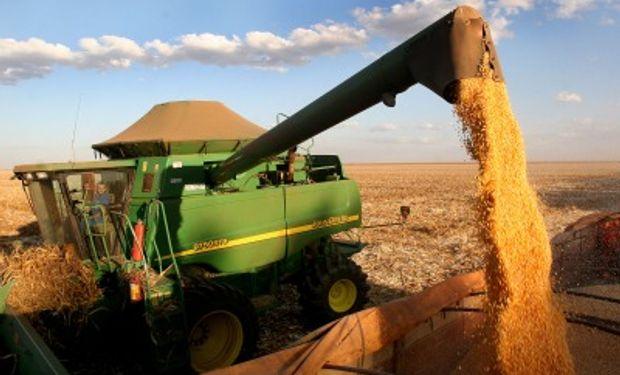 Brasil contará con una cosecha récord de granos