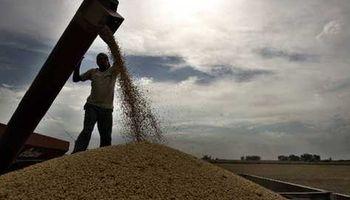 Bolsa de Cereales sube estimación de soja a 55,5 M.Tn.