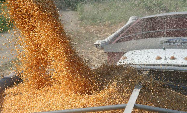 La cosecha récord en Estados Unidos se encuentra sobre la recta final.
