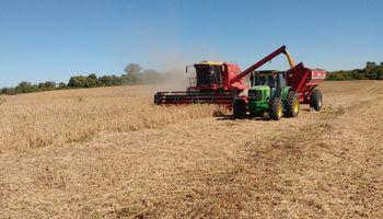 Entre Ríos reclamó la emergencia agropecuaria por sequía para los departamentos del sur