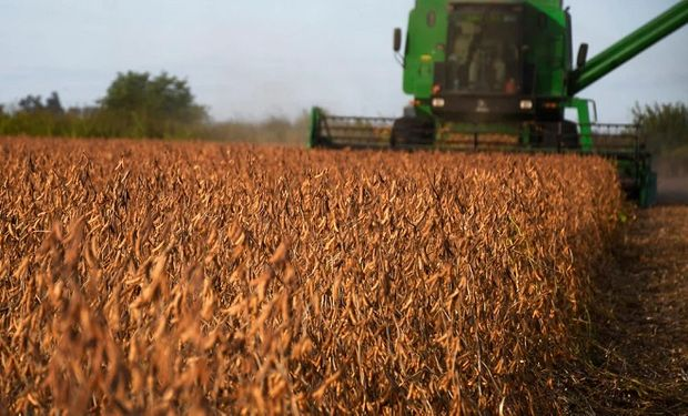 Avanza la cosecha de soja y los rendimientos promedios aumentaron en el centro y norte de Santa Fe