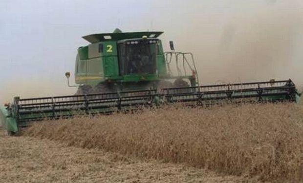 El precio de la soja en el mercado local se negoció con una suba de US$ 5 por tonelada