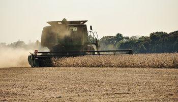 Pese a lluvias, se cosechó un 14% de soja