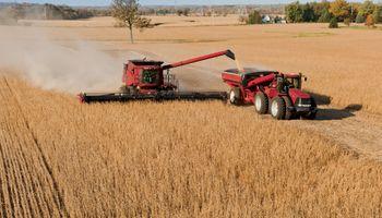 Cosecha actual de granos será récord en Brasil
