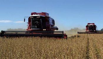 Soja: se superaría el volumen de cosecha previsto