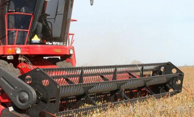 El área de siembra del cultivo fue de casi 58 millones de hectáreas.