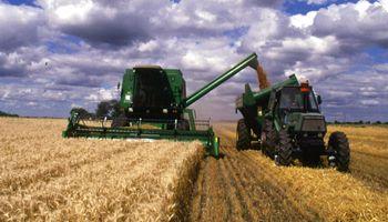 Destacan buen escenario para la cosecha de trigo