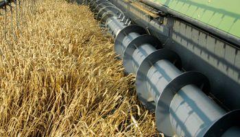 Lanzan descuentos en cosechadoras de más de 50%