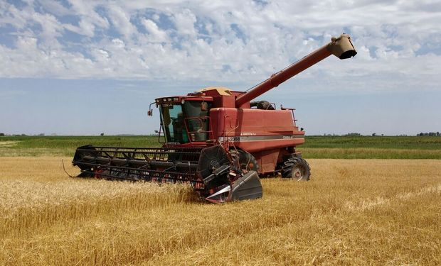 La eliminación de las retenciones y la baja en las de soja impulsó la cosecha argentina, sobre todo en el caso de los cereales.