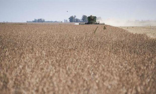 La cosecha vale más por el alza de precios.