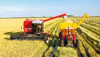 Con la cancha inclinada en favor de los farmers