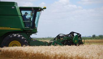 Rueda positiva para el trigo en Chicago